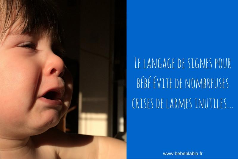 le langage des signes pour bébé évite de nombreuses larmes